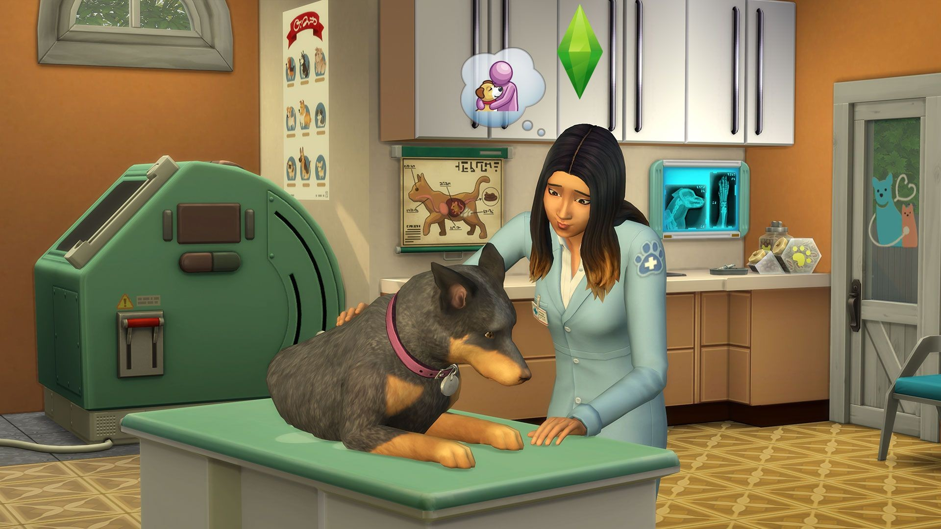 sims 4 cats and dogs wont download