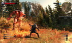 The Witcher 3: Wild Hunt - Complete Edition Switch screenshot 1