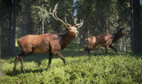 TheHunter: Call of the Wild Xbox ONE / Xbox Series X S 3